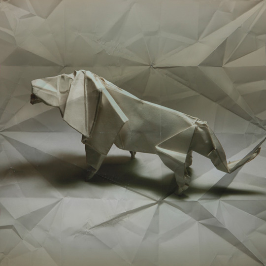 marc-fichou-origami-and-paper-5