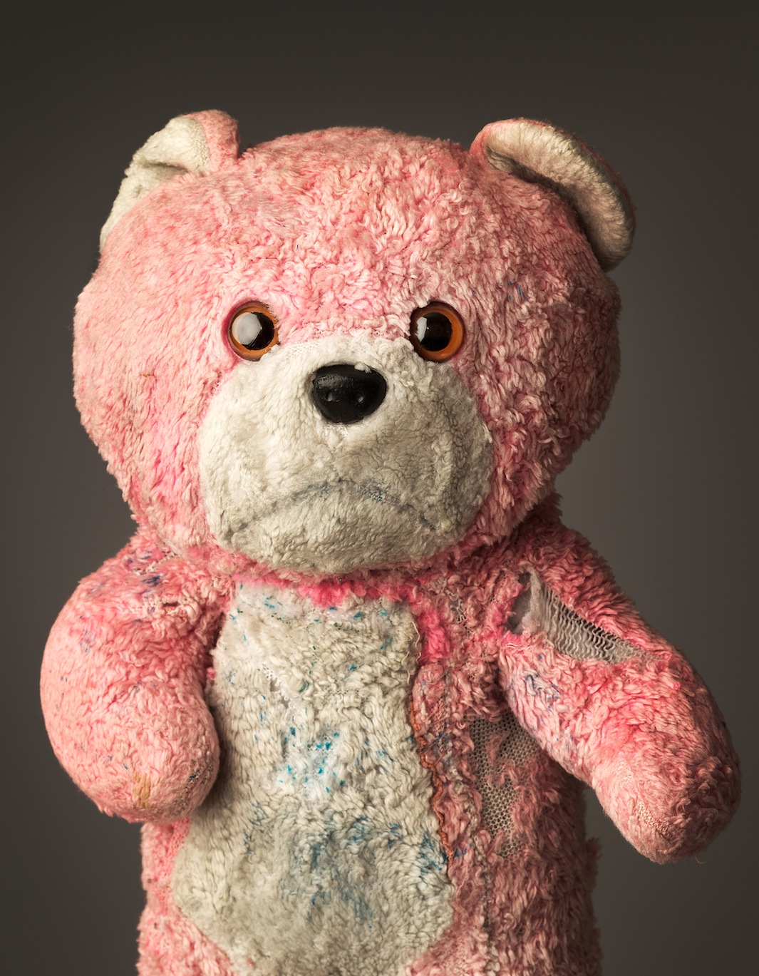 "Pink Teddy, Age: 24, Height: 13"", Belongs to: Aisling Hurley"