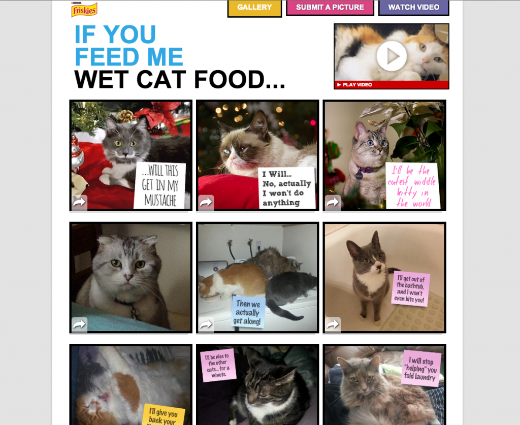 If You Feed Me - Wet Cat Food